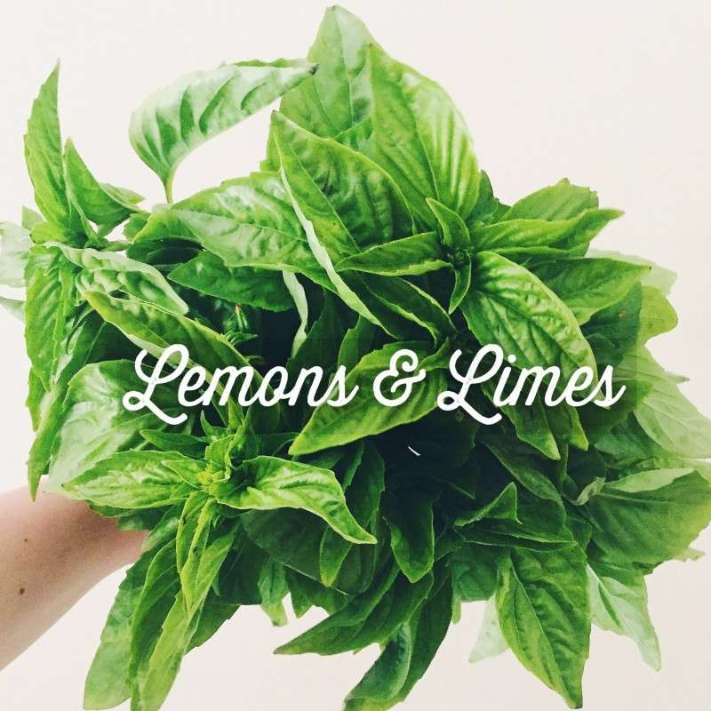 lemonsanddlimes